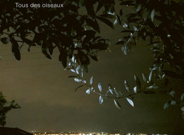 «Tous des oiseaux» από την Ελένη Καραϊνδρου